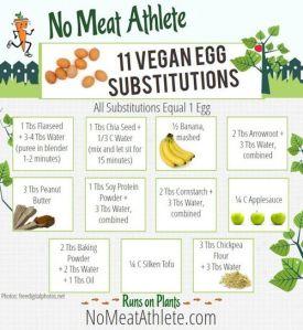 Vegan Egg Substitues